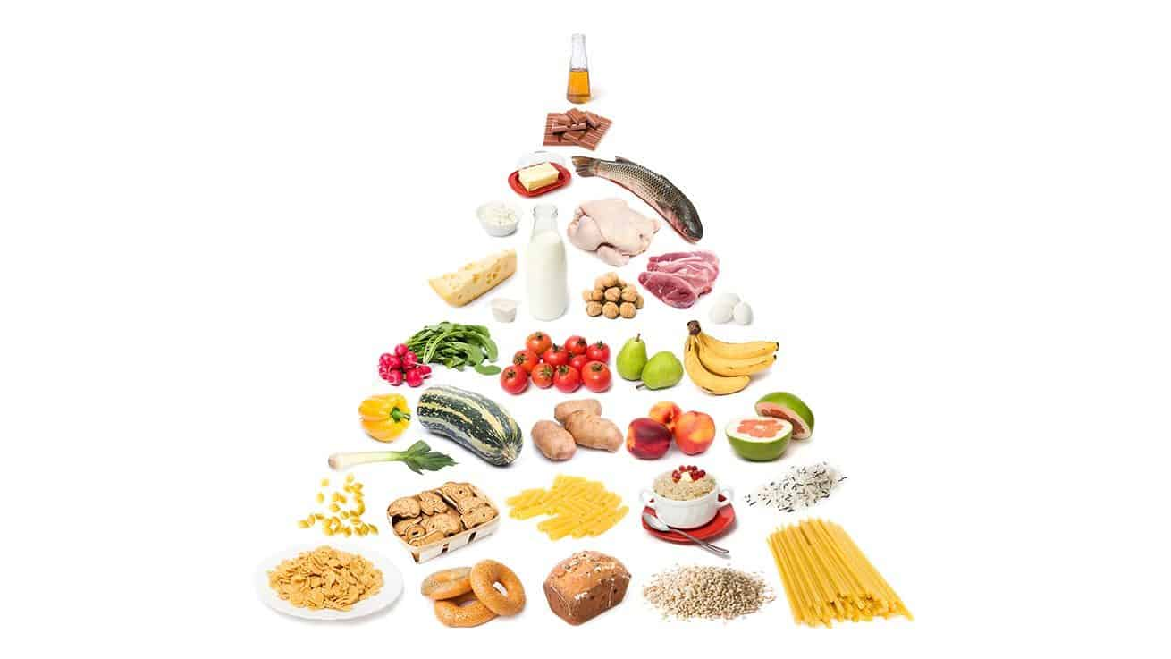 Ξενάγηση στα Apps Διατροφής στο Nexus Gym